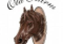immagini_sito_web_primafila_magazine_logo_appartamenti_old_farm (1).jpg